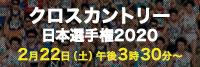 クロスカントリー日本選手権